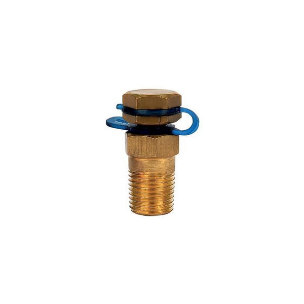 Pressure Temperature Test Plug - Hira Walraven